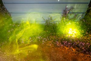 EXP glow-3