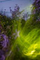 EXP glow-4
